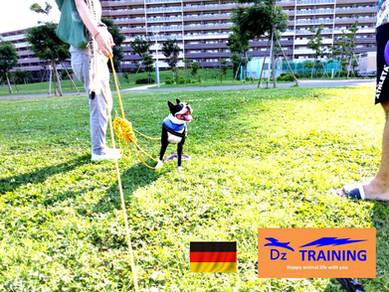 真夏の涼しい早朝トレーニング