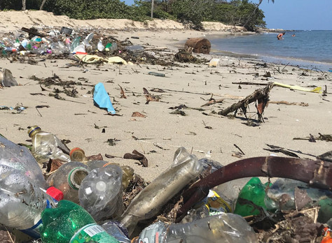 Plastic is all our problem