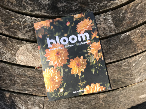 Bloom Magazine feature