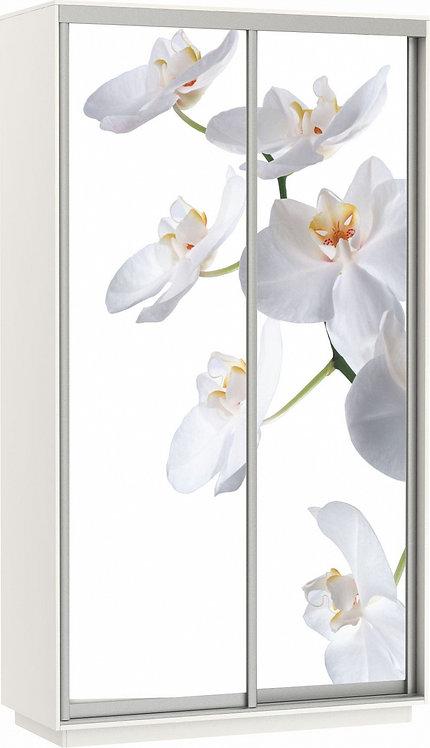 """Е1 """"Шкаф-купе Фото Дуо (Орхидея)"""""""
