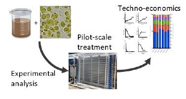 Techno-economic assessment of algal bioremediation credentials comprehensively assessed...