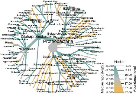 New paper: Bacterial buddies of algae