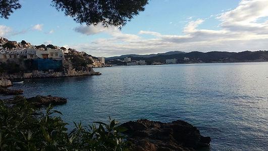puerto en falanit