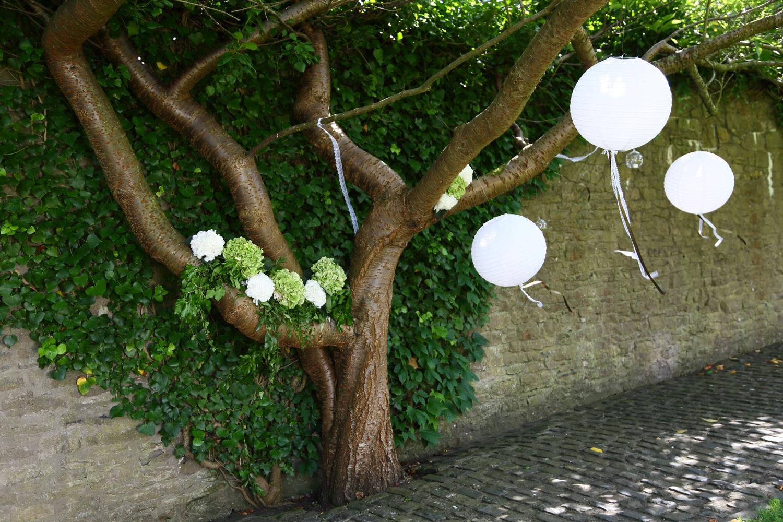Styled wishing tree at Walton Castle