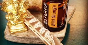 Ätherische Öle - Helfer aus der Natur
