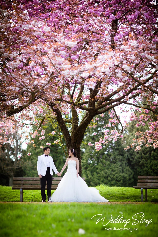 Photography, Wedding Dress & Tuxedo, Hair & Make-up by Wedding Story