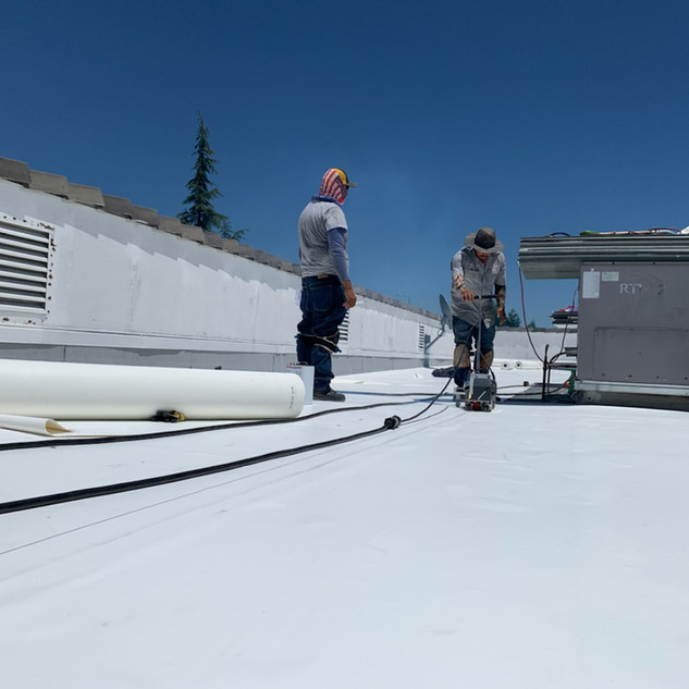 New PVC flat commercial roof