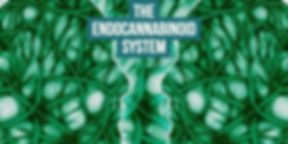 What is the Endocannabinoid System.jpg