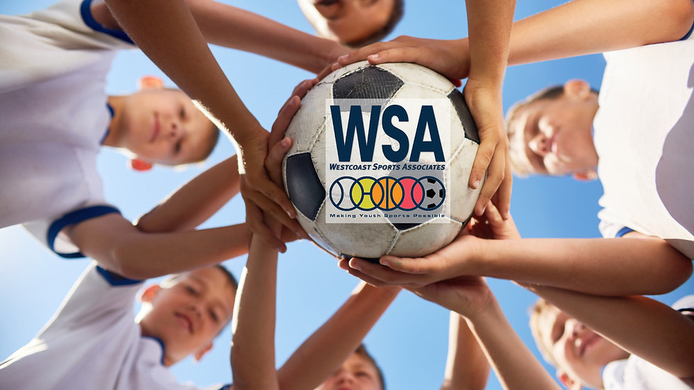 wsa home page photo with logo .jpg
