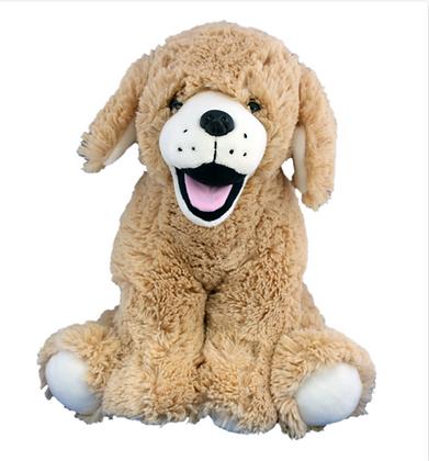 Golden Retriever/Lab Dog