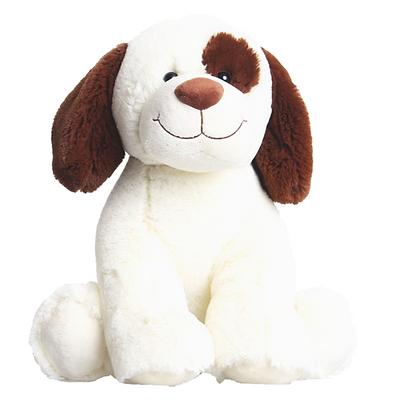 Brown Eyed Dog