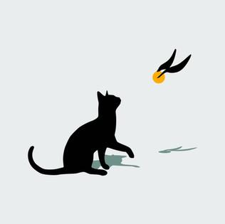 Cat and Snitch