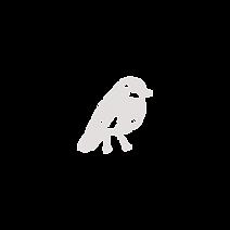 Kollektive_Logo-49.png