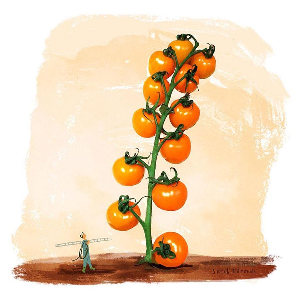 Ted's Tomato Tower - Sarah Edmonds