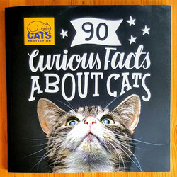 Cats Front Cover