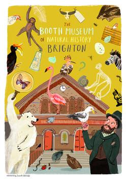 The Booth Museum x Sarah Edmonds