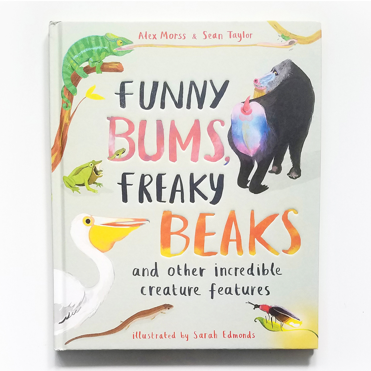 Funny Bums, Freaky Beaks Front Cover