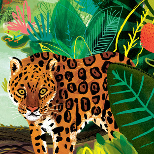 Jaguar - from Explorer's Atlas / Discovery Globe