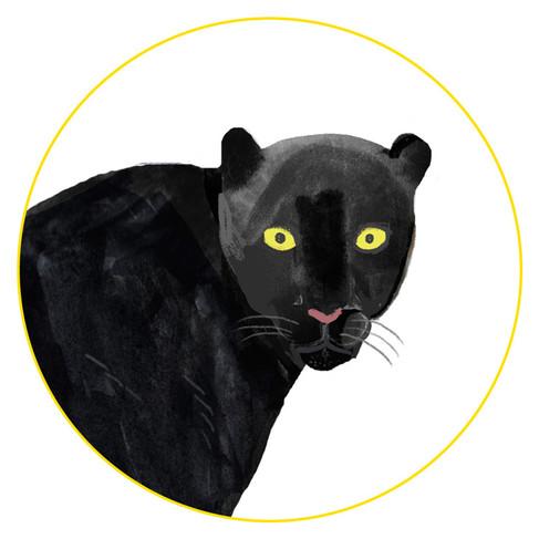 Panther-Icon.jpg