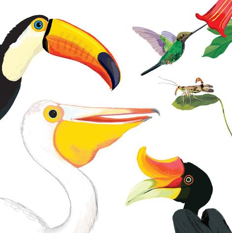 Freaky Beaks