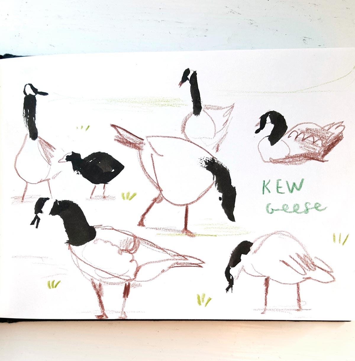 Sarah-Edmonds-kew-geese