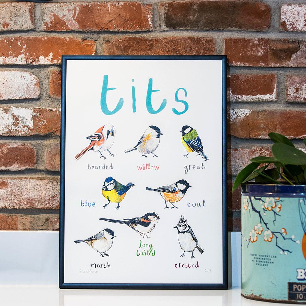 Tits © Sarah Edmonds