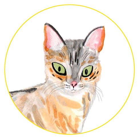 Wildcat-Icon.jpg
