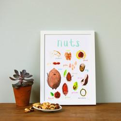 Nuts © Sarah Edmonds