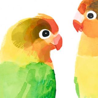 lovebirds close up 1.jpg