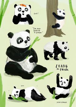 Panda Character Sheet