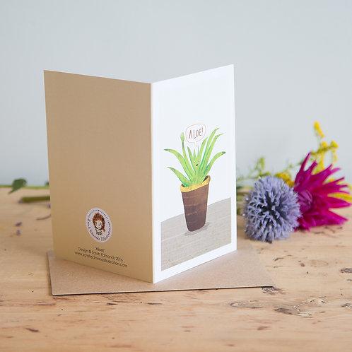 Aloe Greetings Card x 6