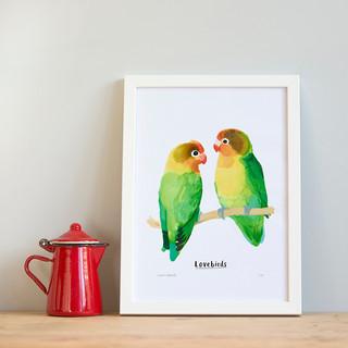 Lovebirds A4.jpg