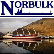 norbulk_logo_500x500.jpg