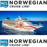 ncl-logo-500x500.jpg