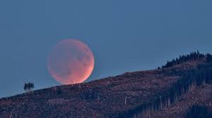 Full Moon 3.jfif
