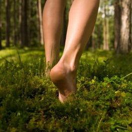 Barefoot Tradings