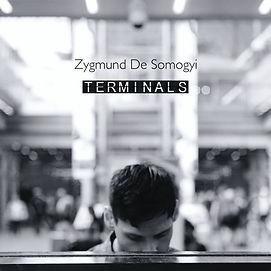 terminals cover 1.jpg