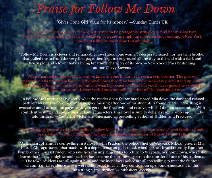 Praise for Follow Me Down copy.png