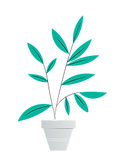 Planta-02.png