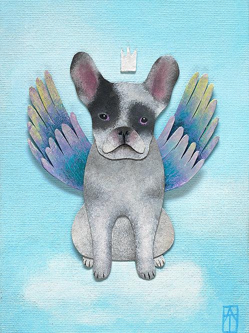 'Angel Dog'