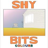 Shybits-Colours Artwork.jpeg
