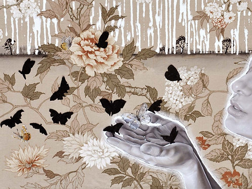 'Black Butterflies' (Small), Limited Edition Giclée Print