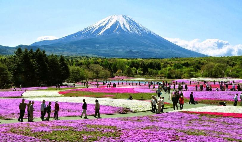 Hakone National Park DTC4F.jpg