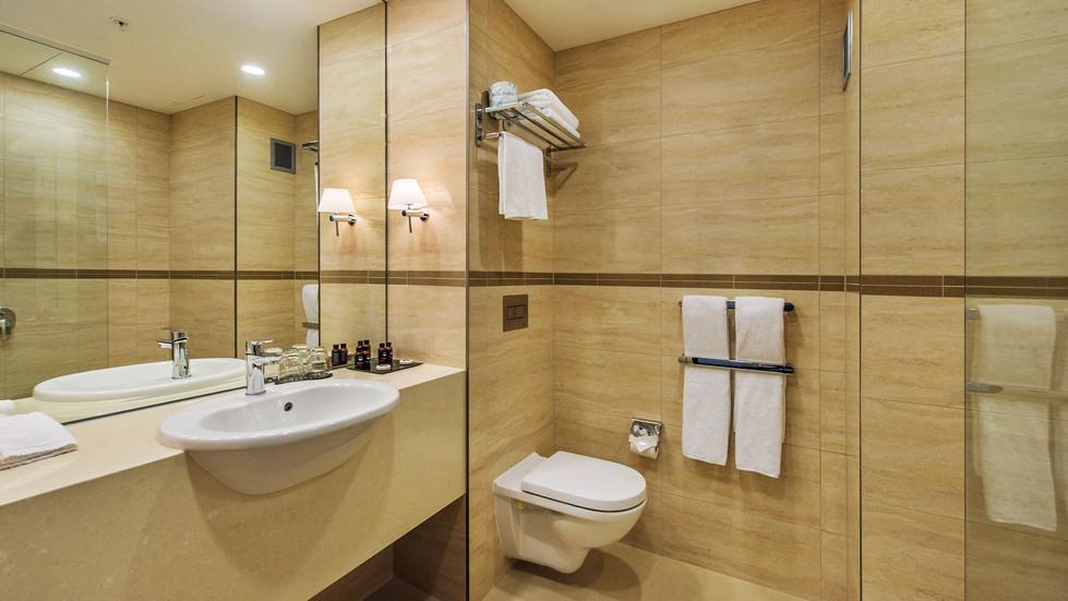 Premium Bathroom DTC4F