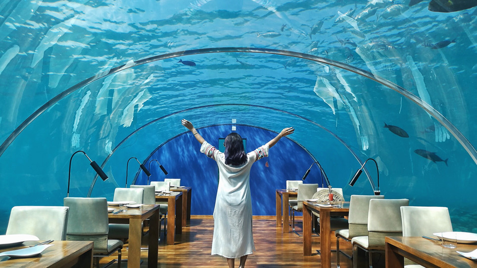 Undersea Restaurant Experience