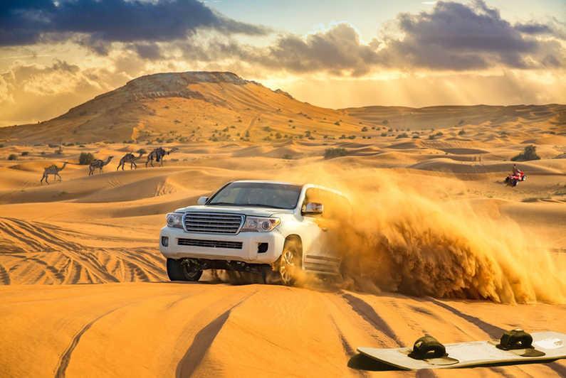Desert Safari DTC4F