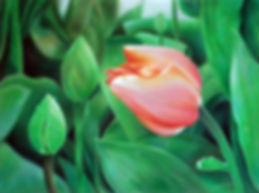 3-Let_Yourself_Bloom.jpg
