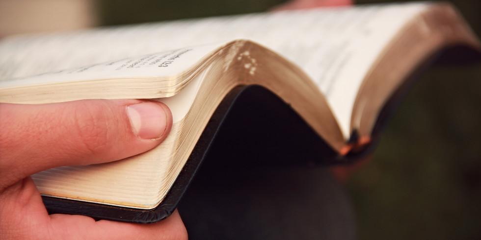 Women's Bible Study on the Book of Luke