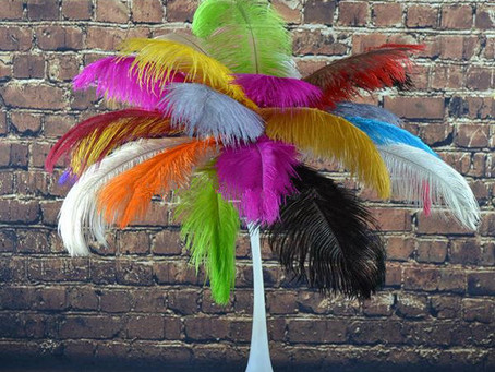Read if you're thinking of using feathers in your displays!