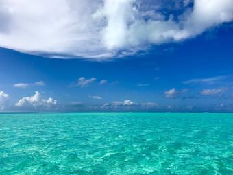 Adventures in Paradise
